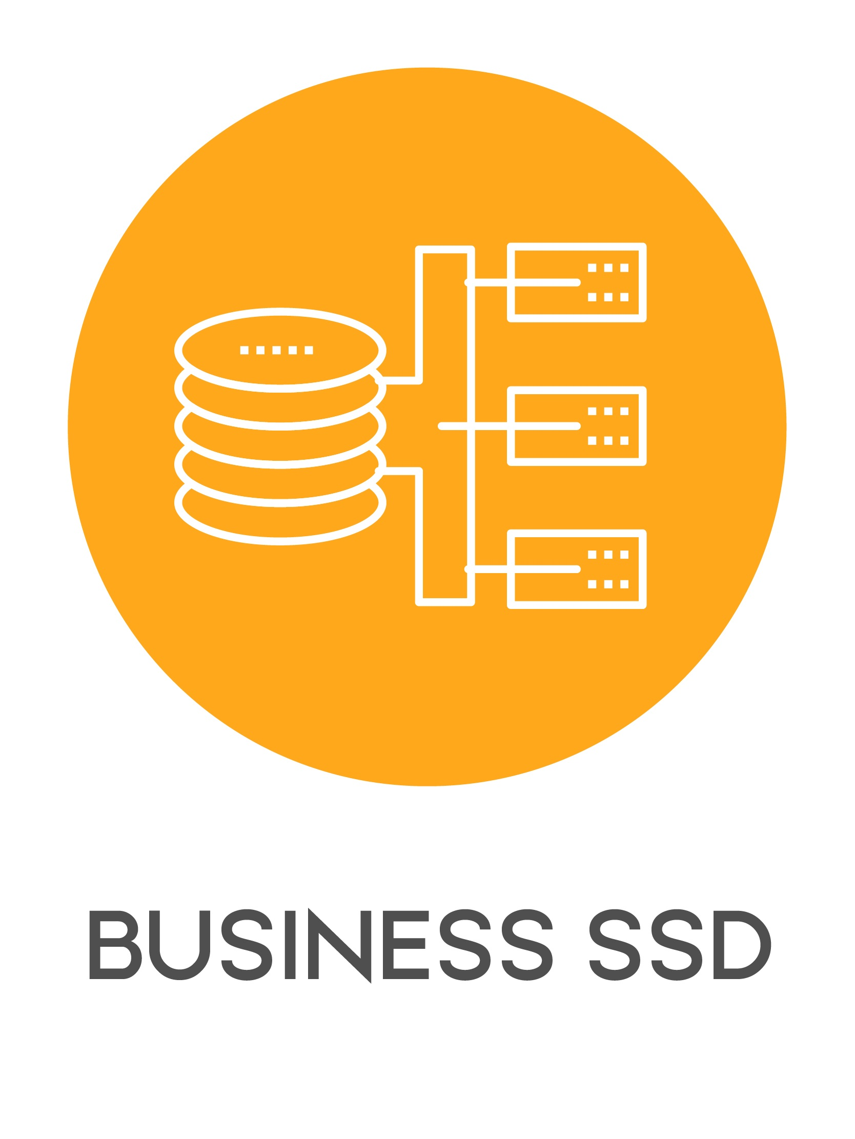 gazduire vps business ssd-01