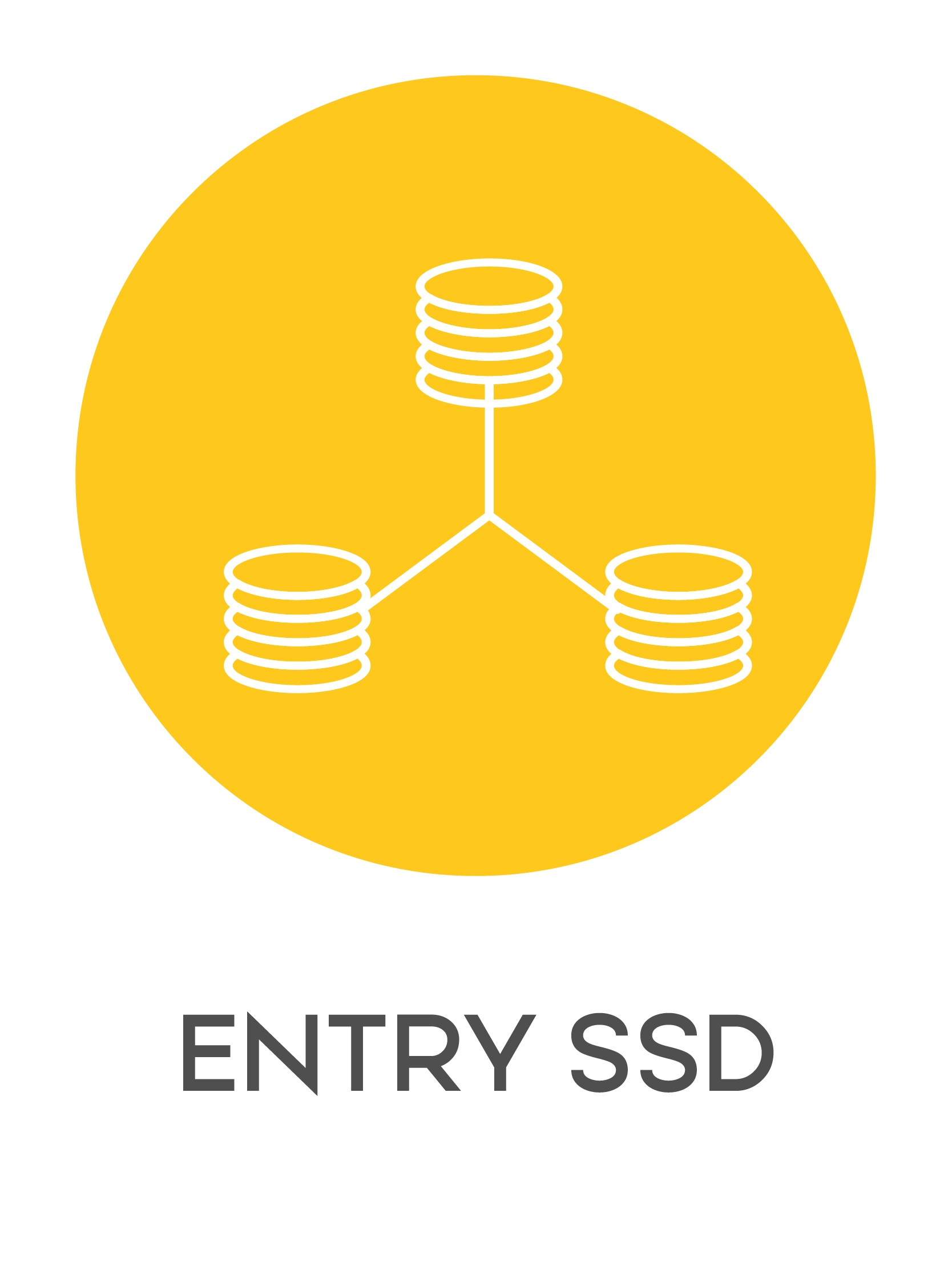 gazduire web entry ssd-01