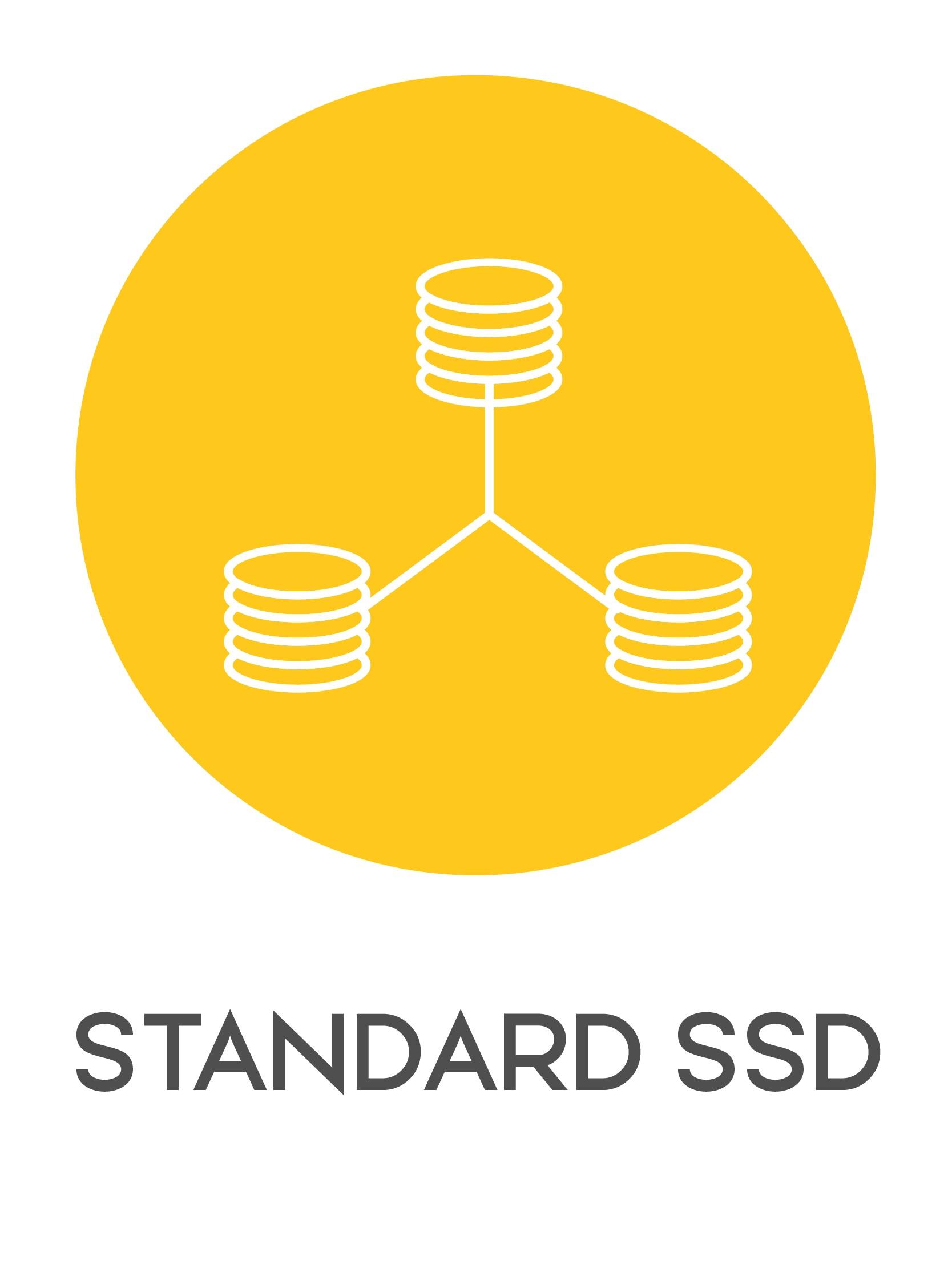 gazduire web standard ssd-01
