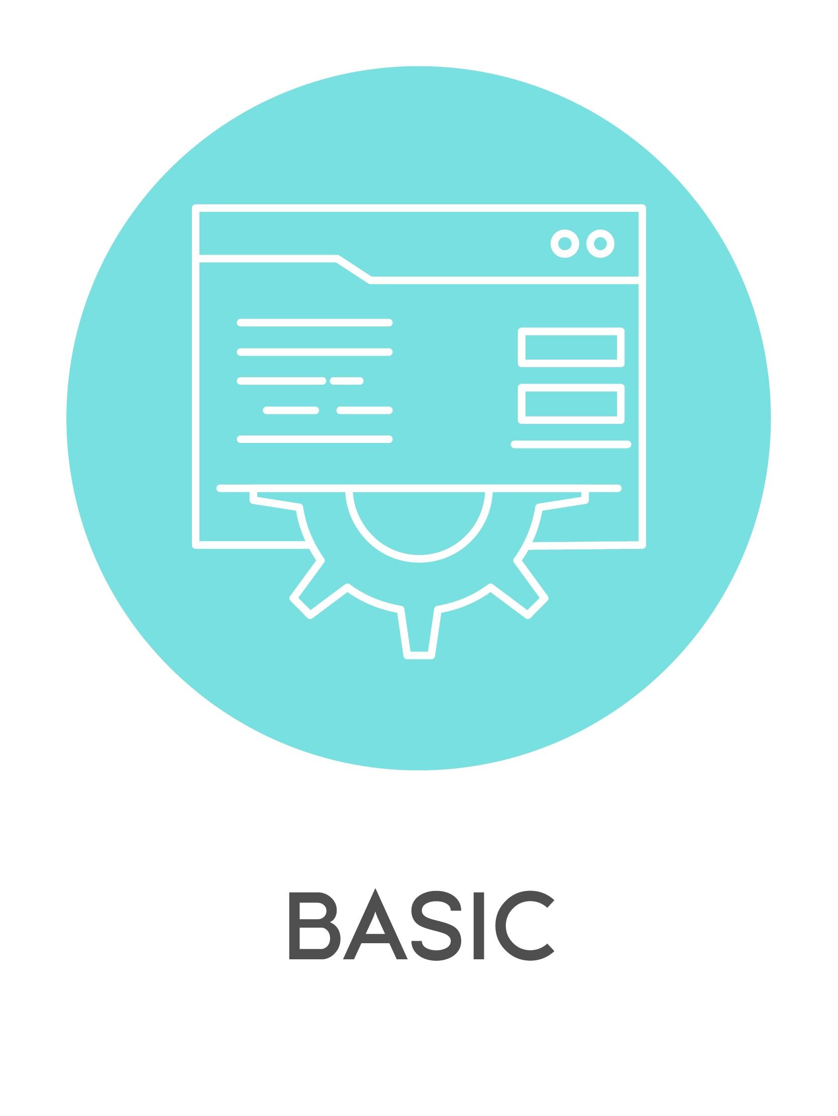 mentenanta web basic-01