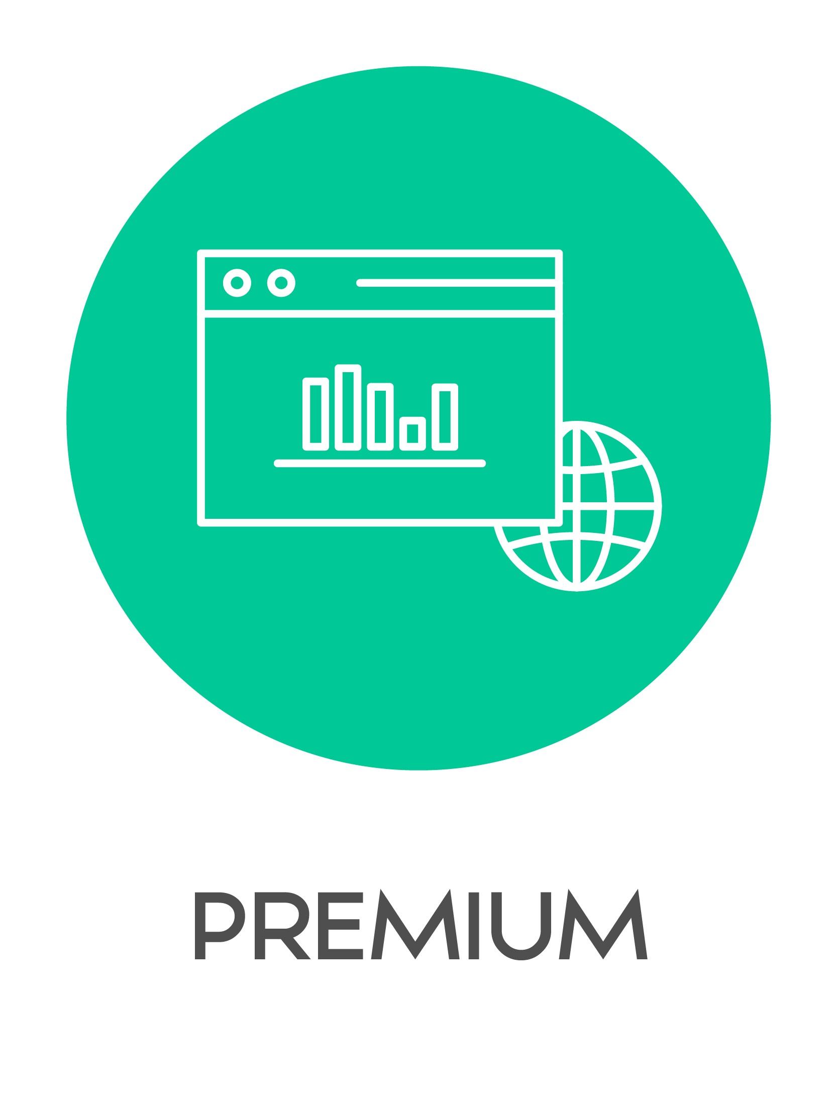 realizare site web premium-01